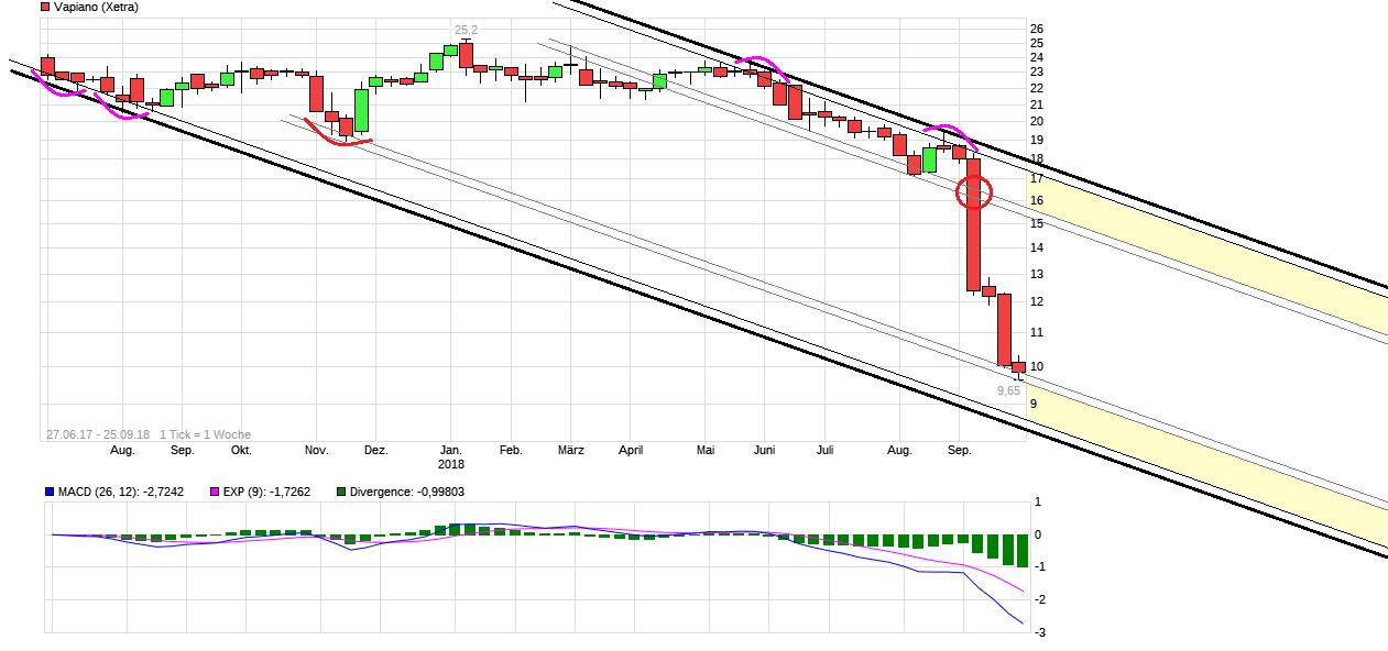 chart_3years_vapiano.png