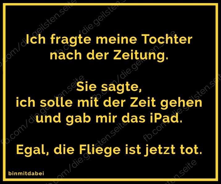 tote_fliege.jpg