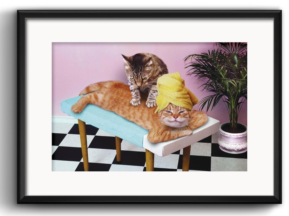 quadro-gato-massagista-com-paspatur-spa.jpg