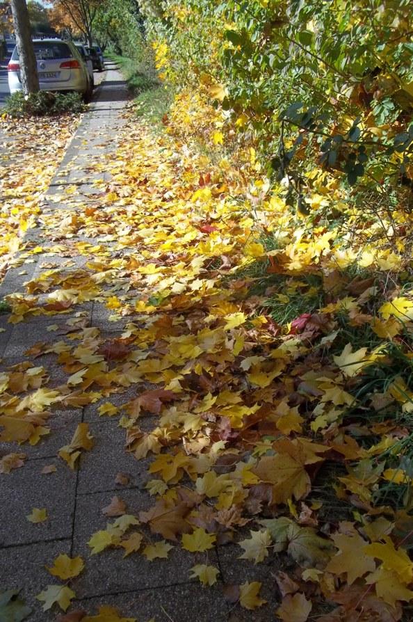 oktober_2015_047.jpg