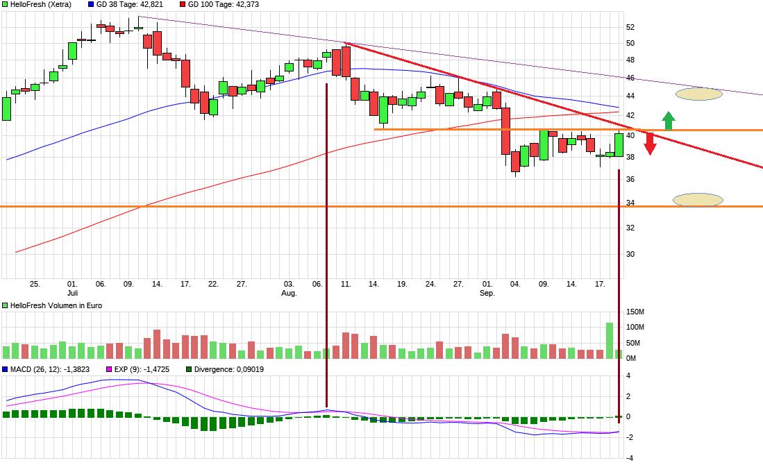 chart_quarter_hellofresh.png