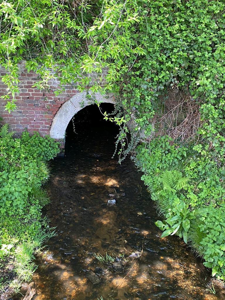 tunnel_wasser.jpg