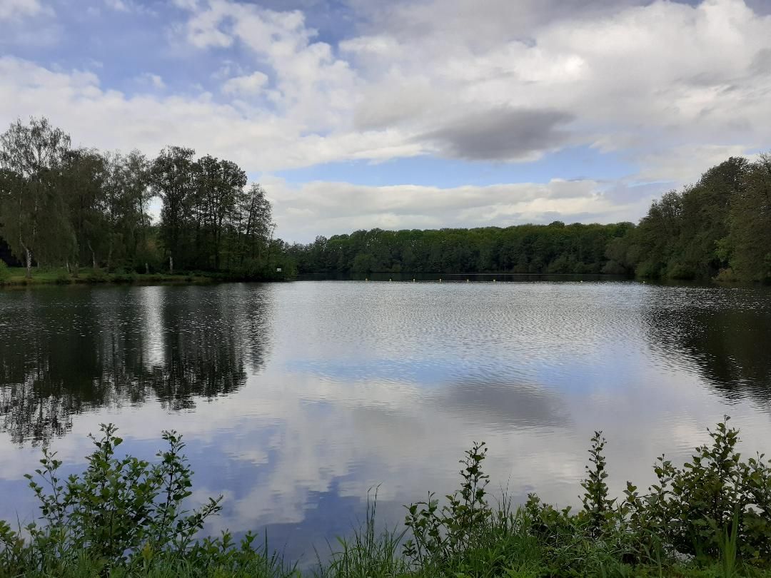 18052021_morgens_am_see.jpg