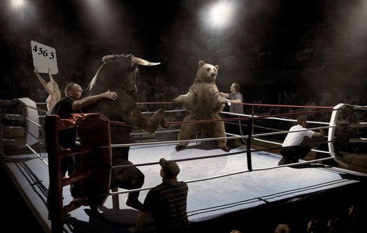bulle-bear4363.jpg