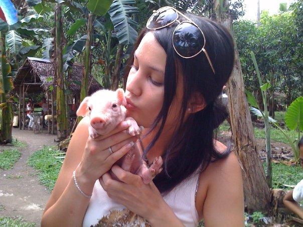 schweinegrippe-ohr.jpg