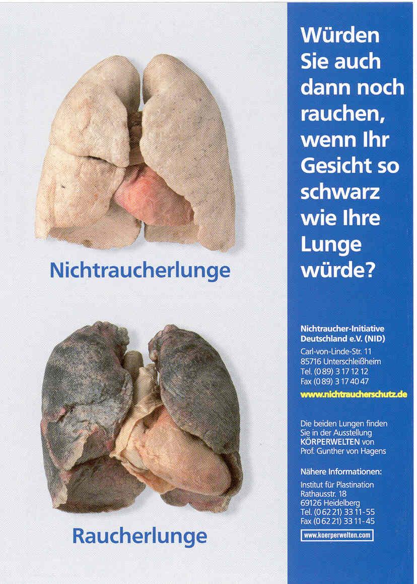 Lunge-NR-R.jpg