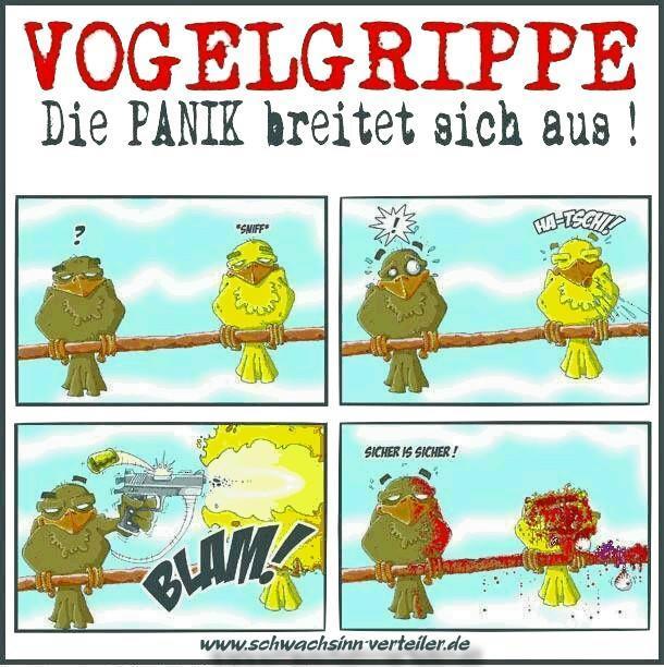Vogelgrippe.jpg