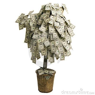 geldbaum.jpg