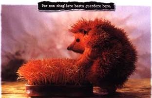 hedgehog-tragedy.jpg