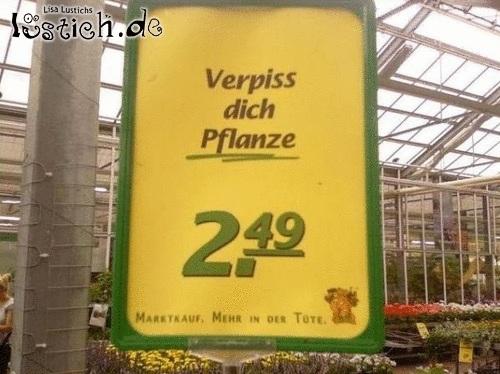 31857-verpiss-dich-pflanze.jpg