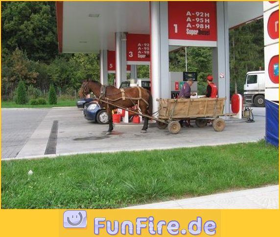 pferd-beim-tanken.jpg