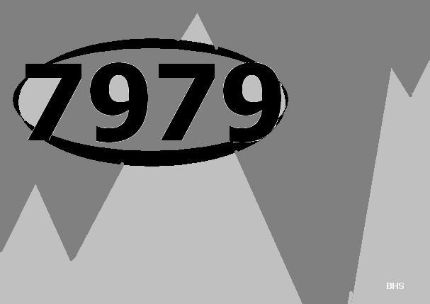 7979.jpg