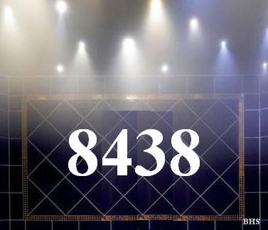 8438.jpg