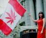 Aurora Cannabis Inc Is Today's Cannabis Focus | Insider Financial